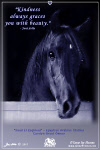 Horse Greeting Card; free to send