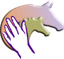 horse heads and hands touching
