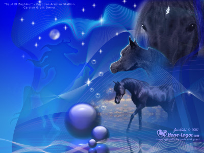 desktop wallpapers horses