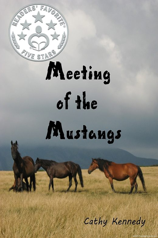 Book cover of Meeting of the Mustangs