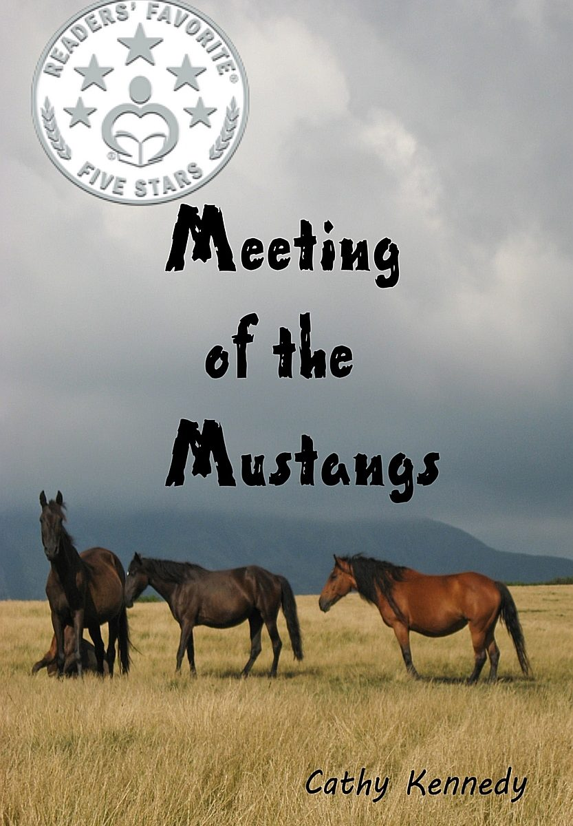 Book cover of Meetting of the Mustangs