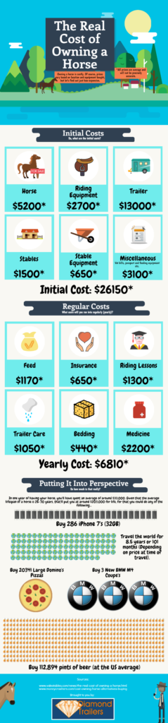 Cost of owning a horse infographic