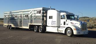 Commercial Horse Trailer