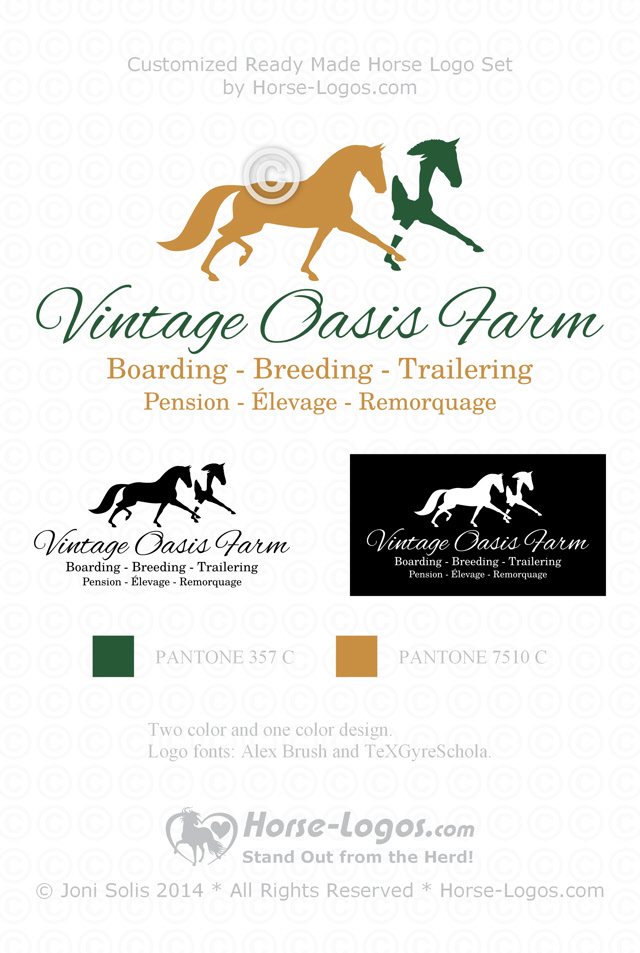New Horse Logo Design for Vintage Oasis Farm