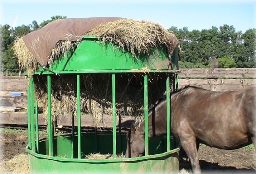 round bale hay feeders