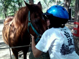 Horse and Teen