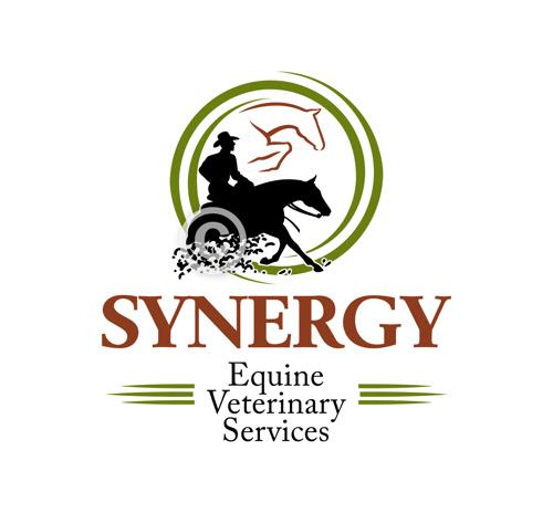 Custom horse logo design created for Synergy Equine Veterinary Services